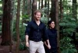 Принц Гаррі і Меган Маркл провели річницю заручин порізно: що сталося?