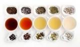 Названы самые полезные виды чая