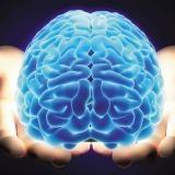 Нейронауки в бизнесе – реальность, будущее и перспективы